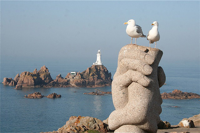 Herring Gulls at Corbiere by Tony Paintin